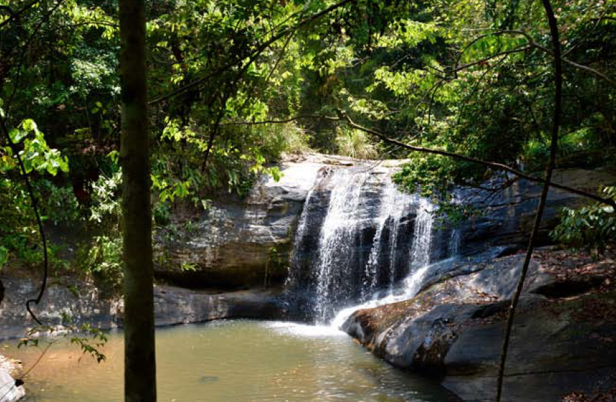 Kukul oya Waterfalls